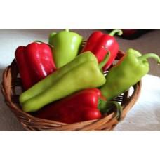 Peppers - Cubanelle (mild) - 4 inch pot